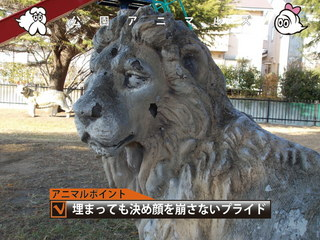 沈みゆくライオン03.jpg